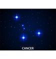 Set of Symbol Zodiac Cancer vector image
