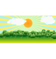 The sun over trees vector image