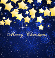 Christmas beautiful background vector image vector image