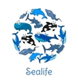 Sealife poster with sea and ocean fishes vector image
