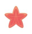 sea starfish vacation beach sign vector image