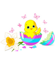 Easter chick surprise vector image