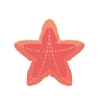 sea starfish vacation beach sign vector image