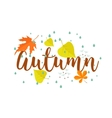 Autumn Calligraphy text  rain and leaves vector image vector image