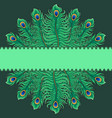 Greeting card with peacock feathers vector image