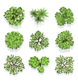 Trees top view set for landscape design and vector image vector image