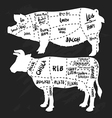 Hand drawn pork and beef cuts diagram and butchery vector image