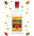tequila vector image