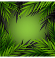Green and dark jungle leaves frame vector image