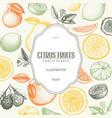 vintage citrus background in pastel colors vector image