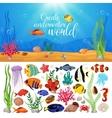 Sea Life Animals Plants Composition vector image