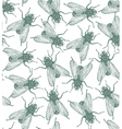 Seamless flies pattern in engraved style vector image