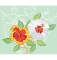 Bouquet of Hibiscus on Light Green Background vector image