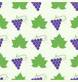 grape berry leaf pattern 4by4 vector image