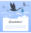Storks with clouds vector image