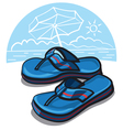 beach shoes vector image