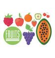 fruits food nutrition diet healthy vector image