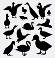 Duck goose and swan animal silhouettes vector image