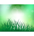Grass meadow background vector