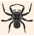Spider with abstract pattern vector image