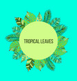summer time tropic background vector image