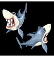 Two fish sharks on a black background two sides vector image