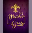 golden lily silhouette symbol festival mardi gras vector image