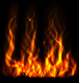 Realistic Fire vector image vector image