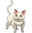 White cat with green eyes vector image