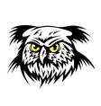 Wild owl vector image