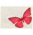 Red butterfly vector image