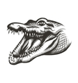 Crocodile head black vector image