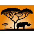 savannah rhino vector image