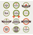 Collection of Retro Premium Quality Labels vector image