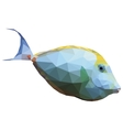 Polygonal of a tropical unicornfish vector image