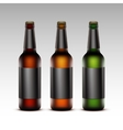 Set of Glass Bottles Dark Beer with Black labels vector image