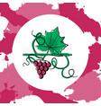 grape berry leaf vector image