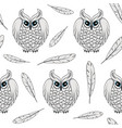 seamless pattern with white polar owls and feather vector image