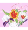 Hibiscus and Iris on a Pink Background vector image