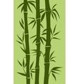 bamboo tree vector image vector image