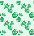 monstera leaves seamless pattern vector image