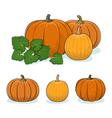 Pumpkin Vegetable Edible Fruit vector image