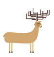 deer cartoon vector image