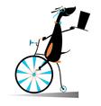Cartoon dog rides a bike vector image
