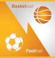 basketball vs football vector image