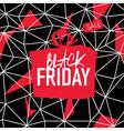 Big Sale Friday Sale Poster vector image