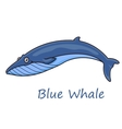Cartoon ocean blue whale vector image
