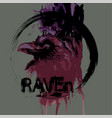 raven head vector image