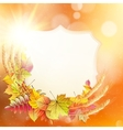 Autumn background with colorful leaves EPS 10 vector image