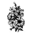 Begonia bouquet vector image vector image